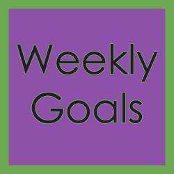 Week 19 and 20: Plan